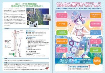 umisakura2013_1.jpg