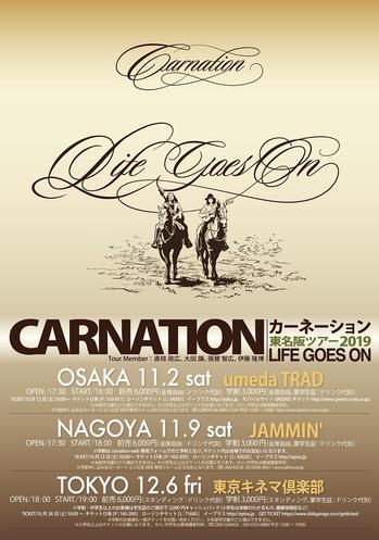 carnation_B5_web.jpg