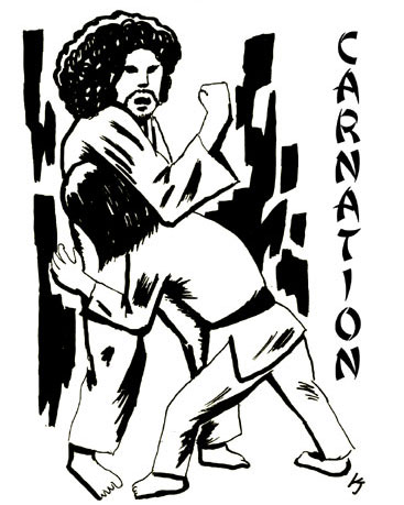http://www.carnation-web.com/news/judo_mihon.jpg